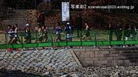 2019年京都マラソン - 写楽彩2