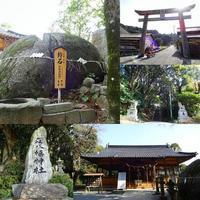 荘八幡神社 - EVOLUTION