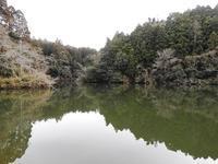 初鳴き - 千葉県いすみ環境と文化のさとセンター