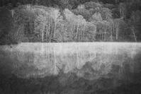 モノクロ風景戸隠鏡池 3 - 光 塗人 の デジタル フォト グラフィック アート (DIGITAL PHOTOGRAPHIC ARTWORKS)
