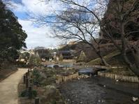 創作。 - 『一日一畫』 日本画家池上紘子