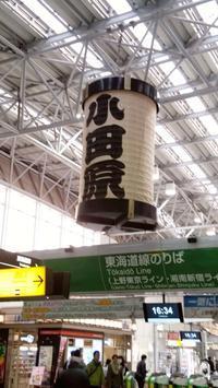 小田原へ行ってきました! - 登志子のキッチン