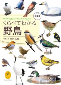 海辺の本棚『くらべてわかる野鳥』 - 海の古書店