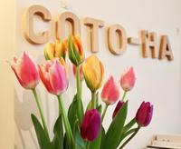 2月18日(月)・19日(火) 定休日のお知らせ。 - coto-ha  の ブログ。