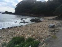 菖蒲沢海岸でビーチコーミングした - ワイドスクリーン・マセマティカ