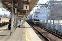 藤田八束の鉄道写真@貨物列車を激写、貨物列車「桃太郎」にもいろいろあります。みんな可愛いです。瑞風も - 藤田八束の日記