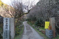 梅見に里山を歩く - 皿倉山の見える家