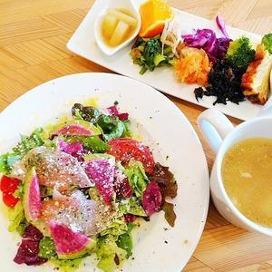 宰府「coba cafe」 - 福岡のサラダランチ