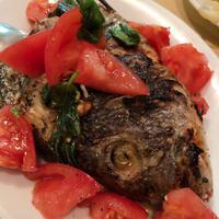 夜の「トラットリア フランコ」お魚の炭焼きが美味し。 - あれも食べたい、これも食べたい!EX