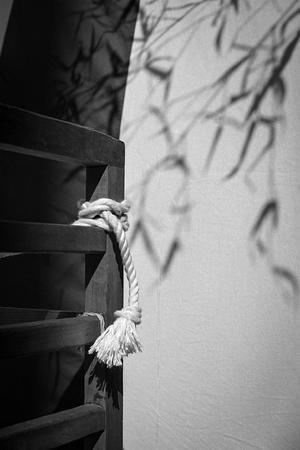ロープに寄り添う光蜥蜴 - Silver Oblivion