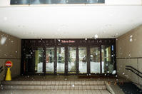 昨日のボタン雪と今日のプラス気温 - 照片画廊