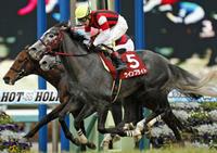 今週は、中山記念と阪急杯! - ホースバーエルコン HORSE BAR ELCON