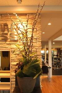 エニタイムフィットネスセンター赤羽北店様へ白鳥のイメージと花について - 北赤羽花屋ソレイユの日々の花