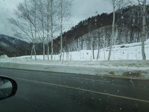 雪の鑑賞に行ってきました! -