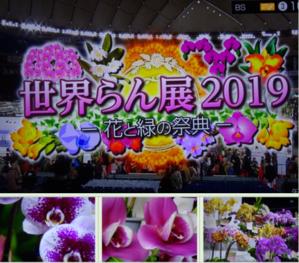 世界らん展2019~花と緑の祭典~BSプレミアム再放送…2019/2/19 - 徳ちゃん便り