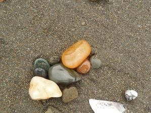 春の兆し - sea amberを探して
