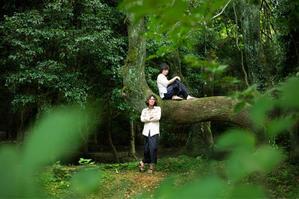 鹿児島でのライブの前に - RAVART公式ブログ 原生林のかたすみで