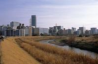 2月の河畔(その2) - そぞろ歩きの記憶