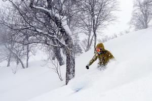 2019年2月12日の滑走写真をUPしました! - スノーボードが大好きっ!!~ snow life in 2018/2019~