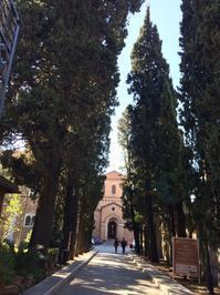 ローマ  コロッセオとジャクソンポロック - ダイアリー