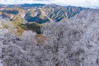 野迫川樹氷2 - toshi の ならはまほろば