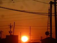 夕焼け - 平野部屋