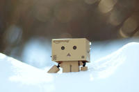 Powder Snow - ∞ infinity ∞