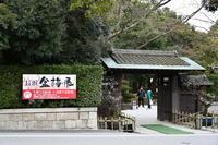 滋賀徘徊2019第68回長浜盆梅展 - 祭りバカとは俺の事(仮)