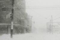ある冬の情景 - I shall be released