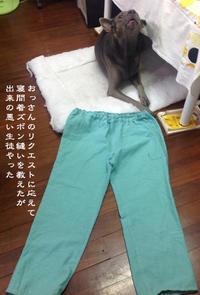 悪夢の代償 - Tangled with 2・・・・・