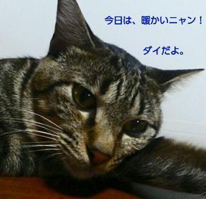 『vol.3727 クイズ にゃるほどね? 答え』 - 鉄道&バス紹介 三岐&近鉄&etc...