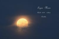 ~Super  Moon~ - My  Photo  Life