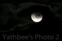 ~ 月夜 ~2019.2.20 - Yathbee's Photo 2