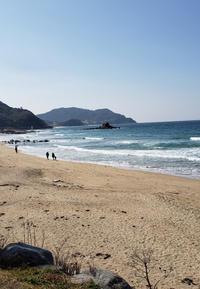 糸島ランチ - ゆずぱん日記