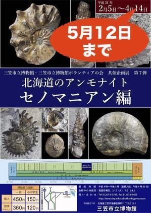 「北海道のアンモナイト セノマニアン編」会期延長のお知らせ!! - 化石のはなし