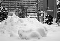 二週間前の大小雪塊と雪融けモード - 照片画廊