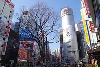 2月20日㈬の109前交差点 - でじたる渋谷NEWS