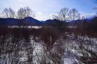 戦場ヶ原冬の枯野 - 風の香に誘われて 風景のふぉと缶