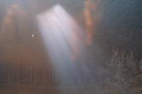 光のカーテン - feel a season