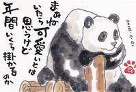茨城県にパンダが来る?! - きゅうママの絵手紙の小部屋