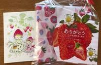 いちごがいっぱい♪  中川政七商店のふきん - y-hygge