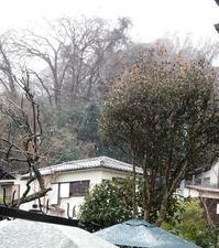 そうだ、冬といえば - トールペイント&クラフト 〔 すみれの森工房 〕