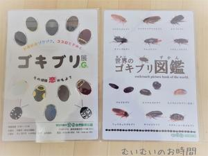 ゴキブリ展戦利品 ~竜洋昆虫自然公園の売店は充実してたよ~ - むいむいのお時間
