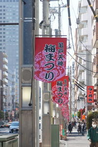 東京散歩(亀戸天神・梅まつり) - マルオのphoto散歩