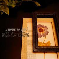 『押し花額』 - カルトナージュ教室 & ハンドクラフト教室 ~ La fraise blanche ~ ラ・フレーズ・ブロンシュ