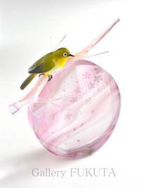 「小林俊和南佳織ガラス作品展」開催中です。 - Gallery福田