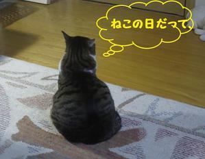 ネコたち - アンティークおやじ