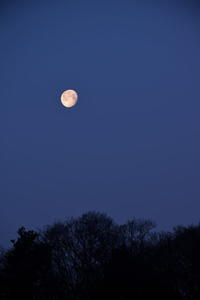 有明の月 - マスター写真館2