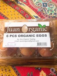 オーガニックエッグ - Mango juice