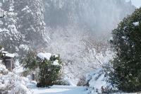 京都大原雪景色2019 - 写真部